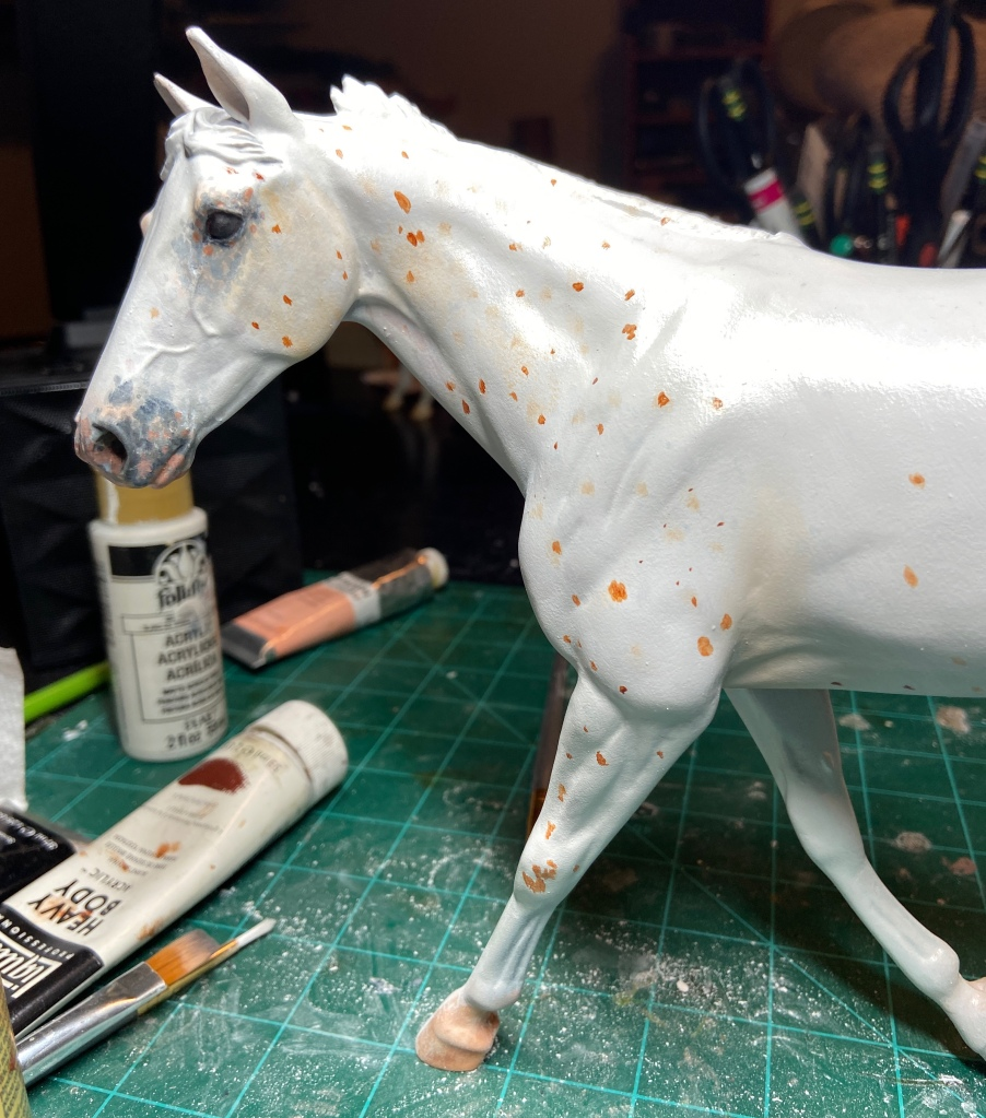Appaloosa Model  Horse